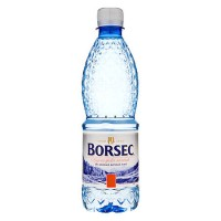 Apa minerala plata 0,5 litri, 12 buc./bax, Borsec