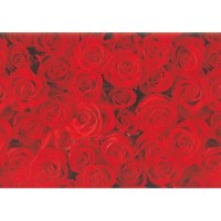 Hartie impachetat trandafiri 2m x 70cm, Herlitz
