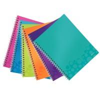 Caiet de birou Leitz WOW Get Organizet A4 cu spira, coperta plastic