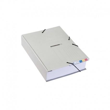 Dosar extensibil carton, elastic si alonja arhivare de mare capacitate, JALEMA