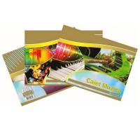 Caiet muzica 24 file, hartie 80g/mp, Silent Gold