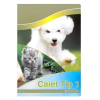 Caiet Tip I Premium, 24 file, Silence Gold