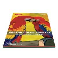 Carton A4 5 culori asortate, 30 coli, 160g/mp, Daco