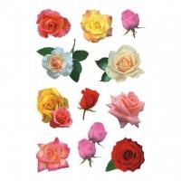 Abtibild cu trandafiri, Herma