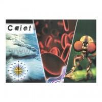 Caiet biologie / geografie A4, 24 file