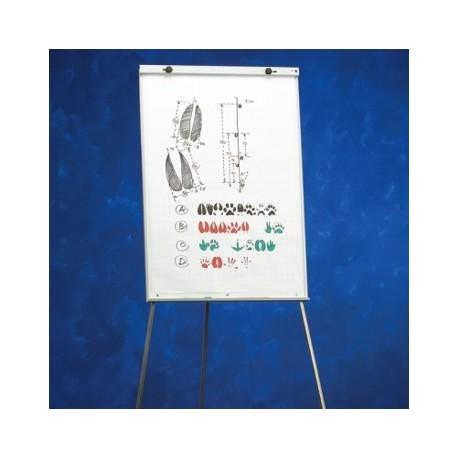 Flipchart magnetic 100 x 70 cm, SMIT Budget