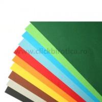 Carton A4 color, 160g/mp, Xerox