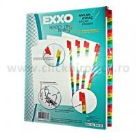 Separator index carton alb numeric 1-31, Exxo