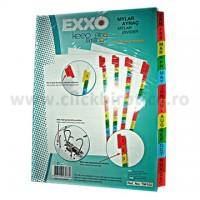 Separator index carton alb lunar Ianuarie-Decembrie, Exxo