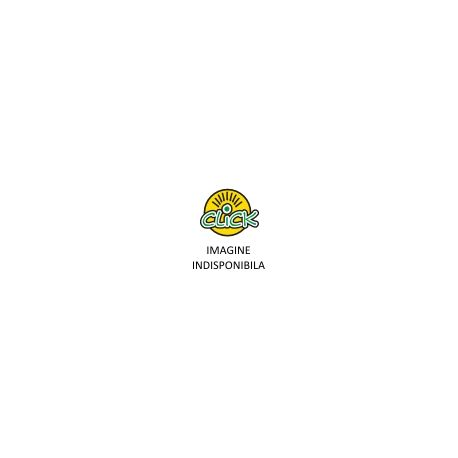 Incarcare cartus cerneala HP CC640E – No.300 si CC641E – No.300 XL (negru)